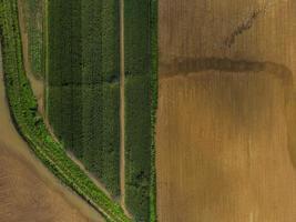 Flygfoto över ett grönt och brunt fält