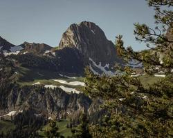 bergslandskap på sommaren foto