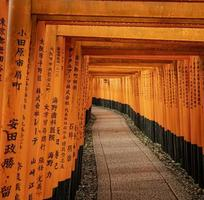 torii grindar vid fushimi inari, kyoto, japan foto