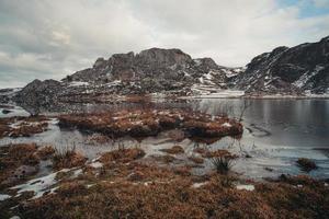 färgrik utsikt över en borste inuti en sjö