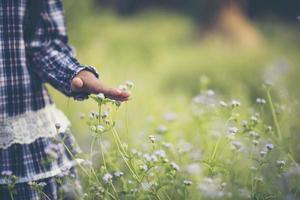 närbild av en liten flickas hand vidrör vildblommor