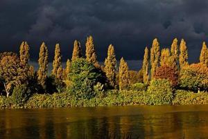 stormmoln nära gröna och bruna träd bredvid våt väg