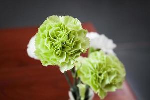 närbild av gröna och vita blommor foto