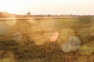 bokeh-lampor vid gyllene timmen foto