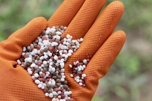 hand som håller gödselmedel