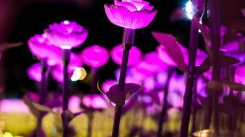 lila blommaljus foto