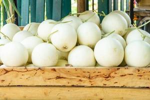 färska ekologiska cantaloupemeloner på trälåda till salu på en marknad, frukt hälsosam mat, utrymme för text foto