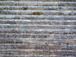 trä textur utomhus foto