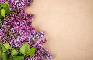 ovanifrån av lila blommor isolerad på brunt papper textur bakgrund med kopia utrymme foto