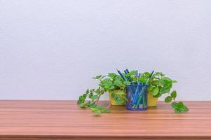 pennor, pennor och blomma på skrivbordet