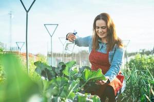 kvinna bonde vattna en broccoli växt med en sprinkler i ett organiskt fält