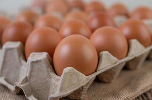 råa ekologiska kycklingägg