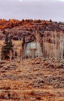 missouri, oss, 2020 - trähus på fältet för brunt gräs
