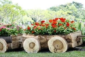 trävagn fylld med blommor foto