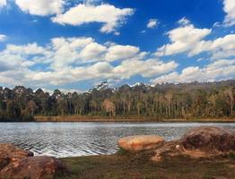 sjöskog med blå himmel foto