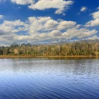 sjöskog med blå himmel och moln foto