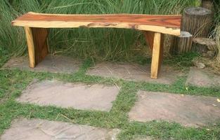träbänk i trädgården foto