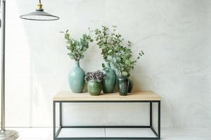 grupp av vackra krukväxt med blomkruka på träbord och vit marmor bakgrund.
