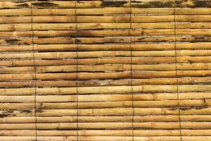 gul bambu för bakgrund foto