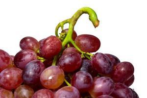 närbild av röda druvor på vit bakgrund