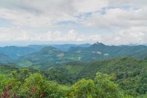 skoglandskap i Thailand