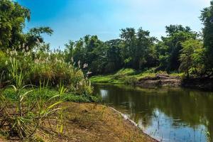flod, skog och blå himmel i Thailand