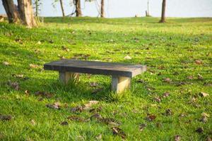 bänk i parken foto