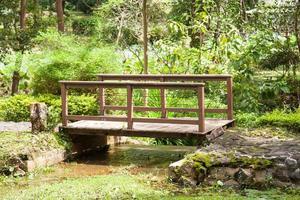 träbro i en park i Thailand foto