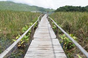trä gångväg i Thailand foto