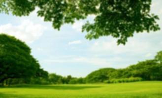 suddig natur bakgrund foto
