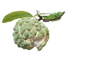 färsk vaniljsåsäpple