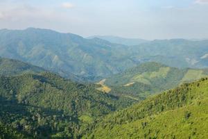 skog och berg i Thailand