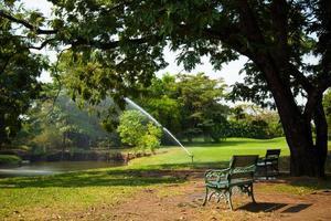 bänkar i parken