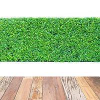 grön häck och träbord isolerat foto