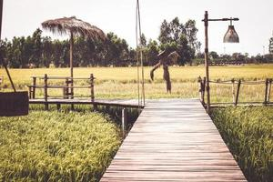 träbro i risfältet i Thailand foto