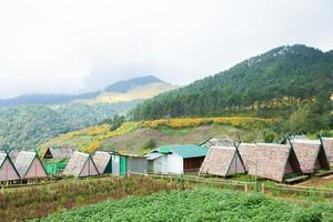 stugor på en gård i Thailand. foto