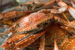 ångade krabbor på tallriken foto