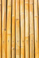 gult bambustaket för bakgrund foto