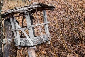 träfågelhus bredvid buske foto