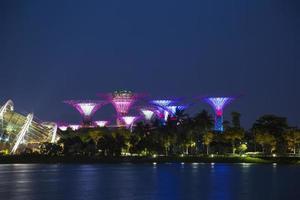 super träd i singapore foto