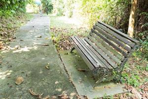 bänk i parken