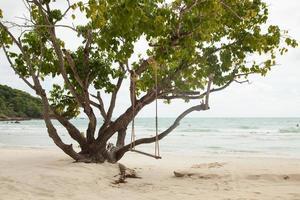 gunga på ett träd foto