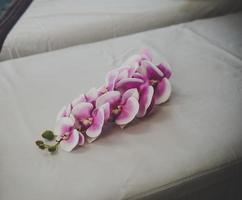 orkidéblommor på spasalongen