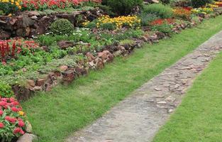 gångväg nära blommor foto