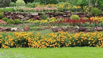 flerskiktade blomsterrabatter i trädgården foto