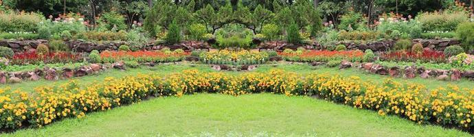 panorama av blommor foto