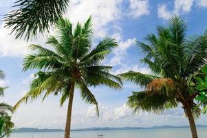sommarstrand i Thailand