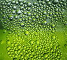 vattendroppar på grön bakgrund foto