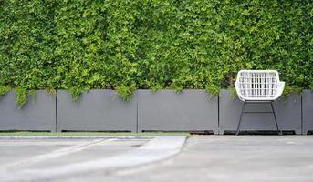 vit stol i trädgården foto