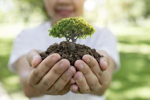 person som håller litet träd foto
